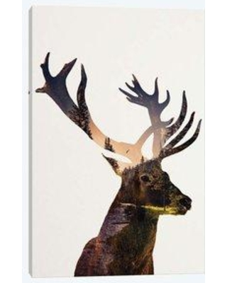 """East Urban Home 'Deer In Forest' By Andreas Lie Graphic Art Print on Wrapped Canvas ETRC5948 Size: 40"""" H x 26"""" W x 0.75"""" D"""