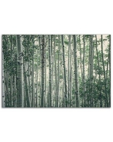 Special Prices On Artwall Obscured By Alters By Eunika Rogers Canvas Wall Art Green