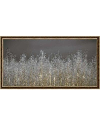 Foundry Select 'Silver Forest' Framed Graphic Art Print on Wrapped Canvas BI019930