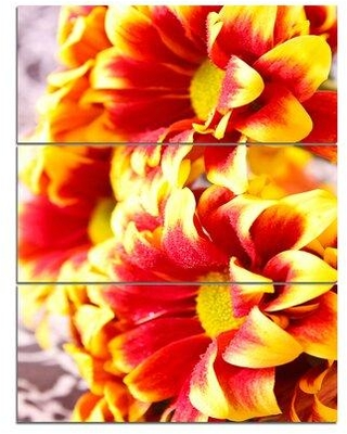 Design Art 'Red Yellow Flower Background Photo' 3 Piece Photographic Print on Wrapped Canvas Set PT14122-3PV