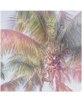 """Bay Isle Home 'Dream Palm I Crop' Graphic Art Print on Wrapped Canvas BYIL5875 Size: 35"""" H x 35"""" W x 2"""" D"""