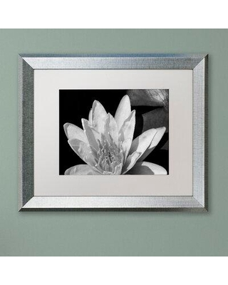Huge Deal On Latitude Run Water Lily In Black White Framed Photographic Print Canvas Fabric In Brown White Black Size 16 H X 20 W X 0 5 D Wayfair