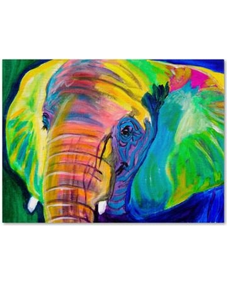 """Trademark Art 'Pachyderm' Art Painting Print on Wrapped Canvas ALI0578-C Size: 14"""" H x 19"""" W x 2"""" D"""