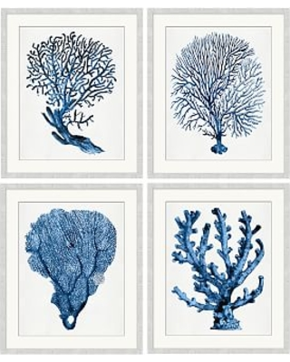 "Coral in Blue Print, 20 x 24"", Set of 4"