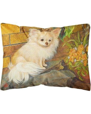 Great Prices For Winston Porter Senn Chihuahua Just Basking Fabric Indoor Outdoor Throw Pillow Polyester Polyfill Polyester Polyester Blend In Brown White Wayfair