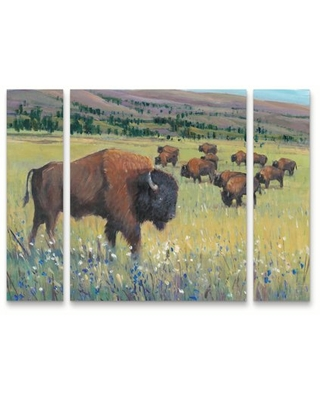 Trademark Fine Art 'Animals of the West I' Canvas Art by Tim O'Toole