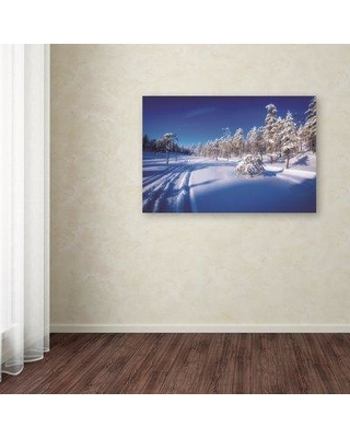 """Trademark Fine Art 'Arctic Nature' Photographic Print on Wrapped Canvas PSL01087-C Size: 30"""" H x 47"""" W"""