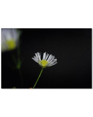"Trademark Fine Art 'Light in the Dark' Photographic Print on Wrapped Canvas MF094-C Size: 22"" H x 32"" W x 2"" D"
