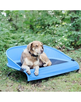 Cool-Air Cot Pet Bed, Large, Trailblazer Blue