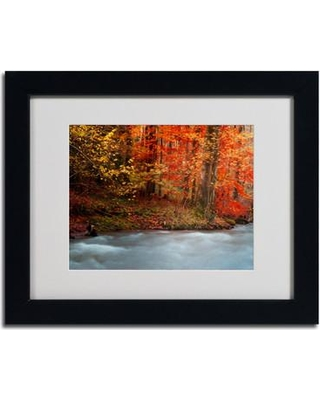 "Trademark Art ""Sometimes"" by Philippe Sainte-Laudy Matted Framed Photographic Print PSL0207-B1114MF / PSL0207-B1620MF Size: 11"" H x 14"" W x 0.5"" D Frame Color: Brown"