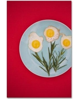 """Trademark Fine Art 'Flower Eggs' Photographic Print on Wrapped Canvas 1X00723-C Size: 47"""" H x 30"""" W"""
