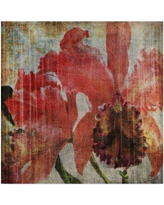 """Winston Porter 'Pacific Orchid I' Graphic Art Print on Wrapped Canvas WNPO4709 Size: 35"""" H x 35"""" W x 2"""" D"""