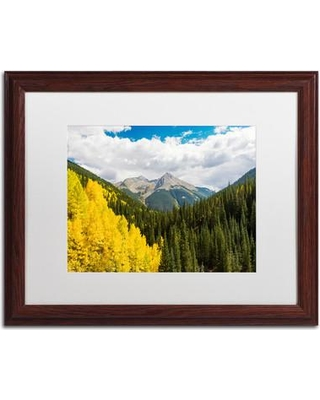 "Trademark Art 'Splash of Gold' Framed Photographic Print on Canvas ALI3821-W1 Matte Color: White Size: 16"" H x 20"" W x 0.5"" D"