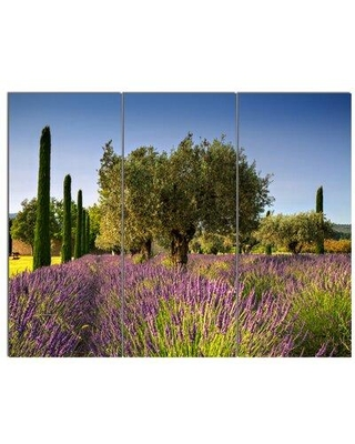 Design Art 'Beautiful Lavender and Olive Trees' 3 Piece Photographic Print on Wrapped Canvas Set PT12362-3P