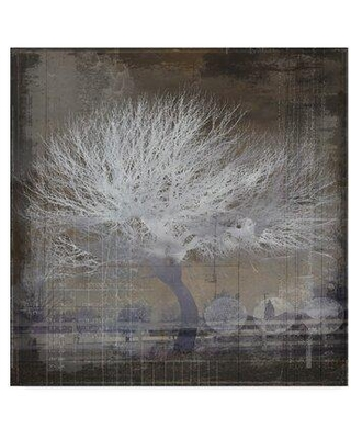 """Trademark Fine Art 'The White Tree' Graphic Art Print on Wrapped Canvas ALI23771-C Size: 14"""" H x 14"""" W x 2"""" D"""