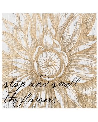 Trademark Fine Art 'Metallic Floral Quote I' Canvas Art by Jarman Fagalde