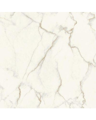 """Ivy Bronx Drewery 32.8' L x 20.8"""" W Gilded Marble Wallpaper Roll BF185185 Color: Grey/Gold"""