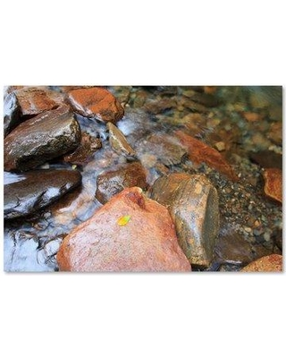 "Trademark Art 'Rocks IV' Photographic Print on Wrapped Canvas ALI15926-C Size: 16"" H x 24"" W"