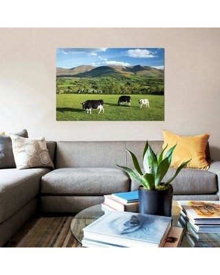 """East Urban Home 'Cows Grazing in the Glen of Aherlow Galtee Mountains County Tipperary Ireland' Photographic Print on Canvas UBAH4906 Size: 8"""" H x 12"""" W x 0.75"""" D"""