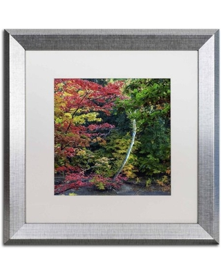 """Trademark Fine Art """"All the Colors of October in Ohio"""" Canvas Art by Kurt Shaffer, White Matte, Silver Frame"""