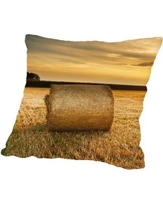 "East Urban Home Hay Landscape Sun Nature Throw Pillow ESRB1457 Size: 20"" H x 20"" W"