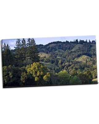 Millwood Pines 'Woodland Pastures II' Photographic Print on Wrapped Canvas BI046635