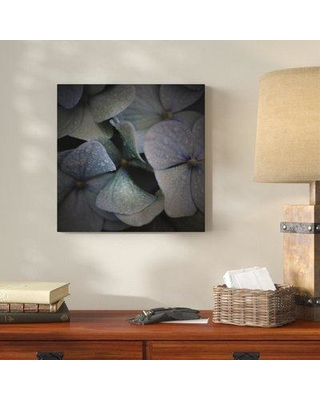 "Millwood Pines 'The Dew' Photographic Print on Wrapped Canvas MLWP5283 Size: 24"" H x 24"" W"