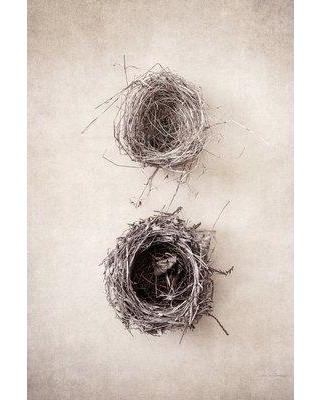 "East Urban Home 'Nest IV' Graphic Art Print on Wrapped Canvas ERNI3014 Size: 26"" H x 18"" W x 0.75"" D"