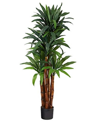 4.5ft. Dracaena Artificial Tree with Natural Trunk