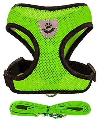 Soft Mesh Dog Harness Vest, X-Large Dog Harness, Night Reflective Adjustable Mesh Harness with Padded Vest and Leash(Green)