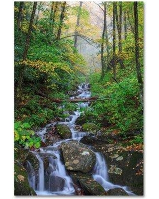"""Trademark Fine Art 'Small Waterfalls 3' Photographic Print on Wrapped Canvas, Canvas & Fabric in Gray/Green, Size 19"""" H x 12"""" W   Wayfair"""