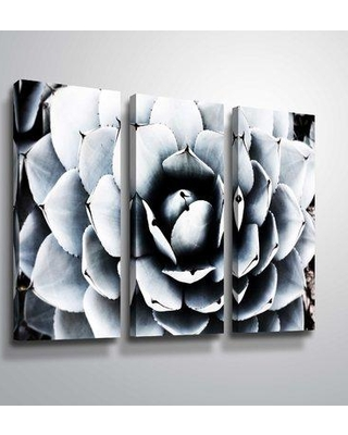 "Latitude Run 'Spring Succulent Symphony 1' Photographic Print Multi-Piece Image LDER6666 Size: 24"" H x 36"" W x 2"" D Format: Wrapped Canvas"