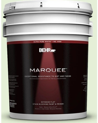 BEHR MARQUEE 5 gal. #430C-2 Spring Morn Flat Exterior Paint and Primer in One