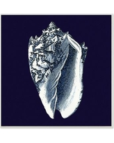 "Stupell Industries Distressed Navy and White Conch Shell' Graphic Art Print cwp-138_wd_12x12 Size: 12"" H x 12"" W, Material: Wood"