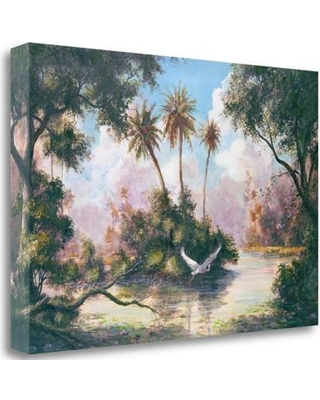 """Tangletown Fine Art 'Glades Hammock' Graphic Art Print on Wrapped Canvas ICF494D-2416c Size: 19"""" H x 28"""" W"""