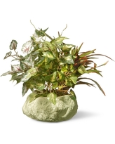 Artificial Table Plant in Ceramic Pot Green 21.5 - National Tree Company