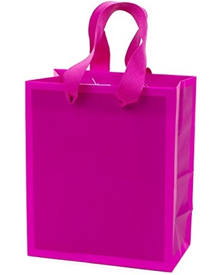"""Hallmark 6"""" Small Gift Bag (Hot Pink) for Birthdays, Bridal Showers, Baby Showers, Easter, Mothers Day or Any Occasion"""