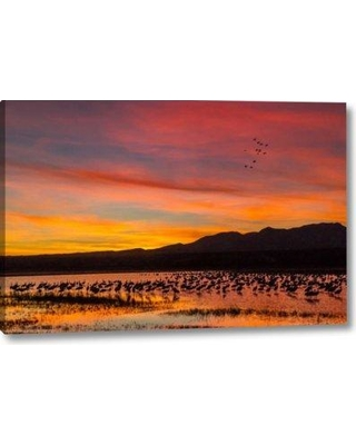 """Winston Porter 'New Mexico Sandhill Cranes in Water at Sunset' Photographic Print on Wrapped Canvas BF155713 Size: 21"""" H x 32"""" W x 1.5"""" D"""
