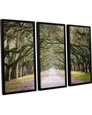 """Loon Peak 'Oak Trees with Spanish Moss in Savannah Georgia' by Cody York 3 Piece Framed Photographic Print on Wrapped Canvas Set LNPK2583 Size: 36"""" H x 54"""" W x 2"""" D"""