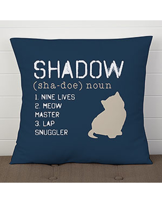 Custom Cat Pillow 18 - Definition of My Cat