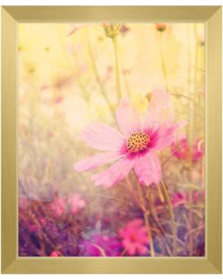 """Click Wall Art Cosmos Flowers Framed Photographic Print on Canvas FLR0000008FRM Size: 22.5"""" H x 18.5"""" W Format: Gold Framed"""