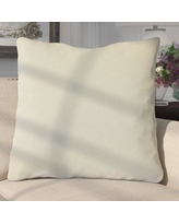 Darby Home Co Aveneil Solid Floor Pillow DABY9007 Color: Pearl