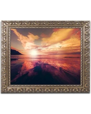 """Trademark Art 'The Light Side of the Sun' by Philippe Sainte-Laudy Framed Photographic Print PSL0929-G1114F / PSL0929-G1620F Size: 11"""" H x 14"""" W x 0.5"""" D"""