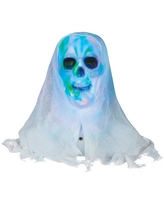 Lightshow Skull Bust with White Face Halloween Decoration