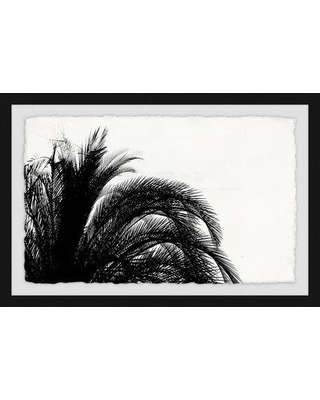 "Wrought Studio 'Palm Tree Foliage' Framed Photographic Print BF034377 Size: 16"" H x 24"" W x 1.5"" D"
