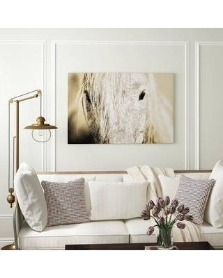 "Three Posts 'Camargue Horse' Photographic Print X112783318 Size: 8"" H x 12"" W x 1.5"" D Format: Canvas"