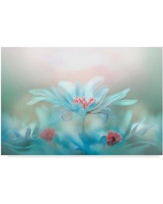 """Trademark Art 'Fantasy Floral' Photographic Print on Wrapped Canvas 1X06191-C Size: 30"""" H x 47"""" W x 2"""" D"""