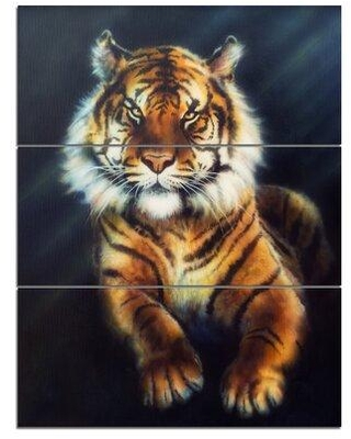 """Design Art Mighty Tiger - 3 Piece Wall Art on Wrapped Canvas Set, Canvas & Fabric in Blue/Orange, Size Medium 25""""-32"""" 