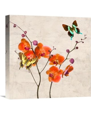 """Global Gallery Orchids and Butterflies I by Teo Rizzardi Painting Print on Wrapped Canvas GCS-453771- Size: 18"""" H x 18"""" W x 1.5"""" D"""
