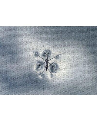 East Urban Home The Little Animals Gray Area Rug X112585911 Rug Size: Rectangle 2' x 4'